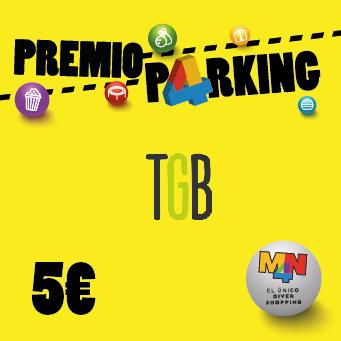 parking mn4